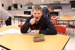 Student eating a microgreen