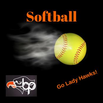 Softball playoff logo