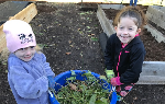 Two students working in the garden