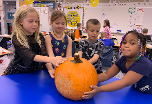 Four students checking out their pumpkin
