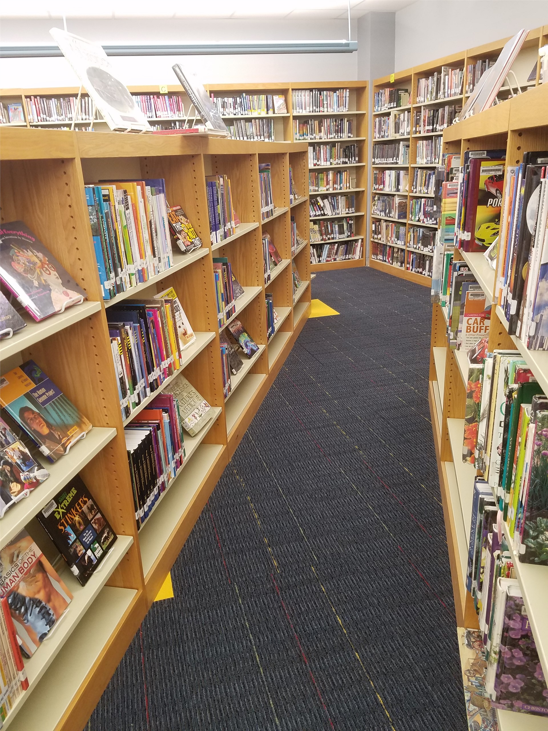 a view down the book shelves