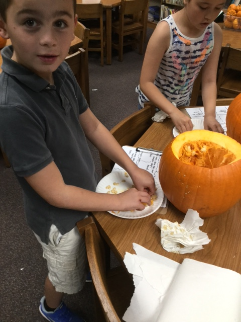 Students work with pumpkins at the Lincoln Garden Club
