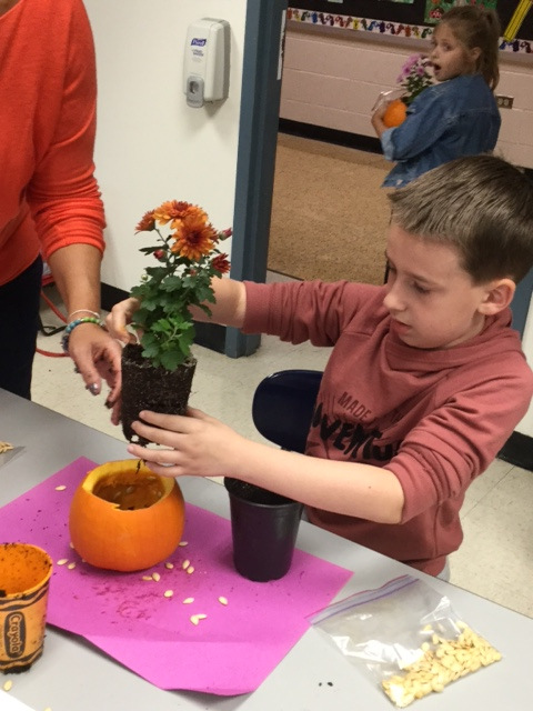 Students plant mums in carved out pumpkin shells at a Garden Club meeting