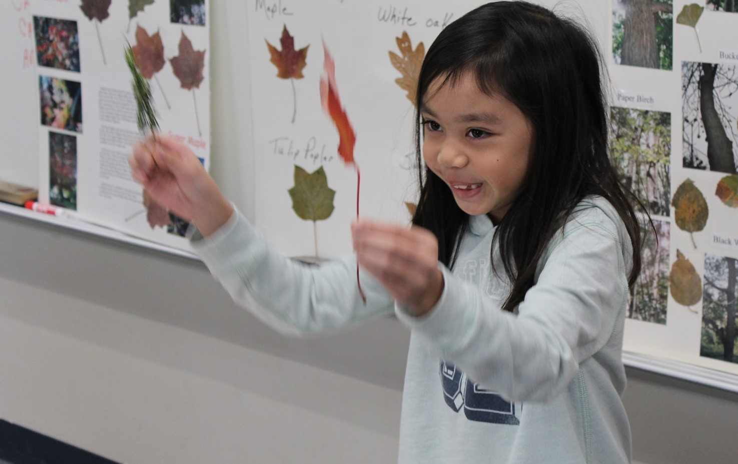 Memorial Second Graders Learn About Trees