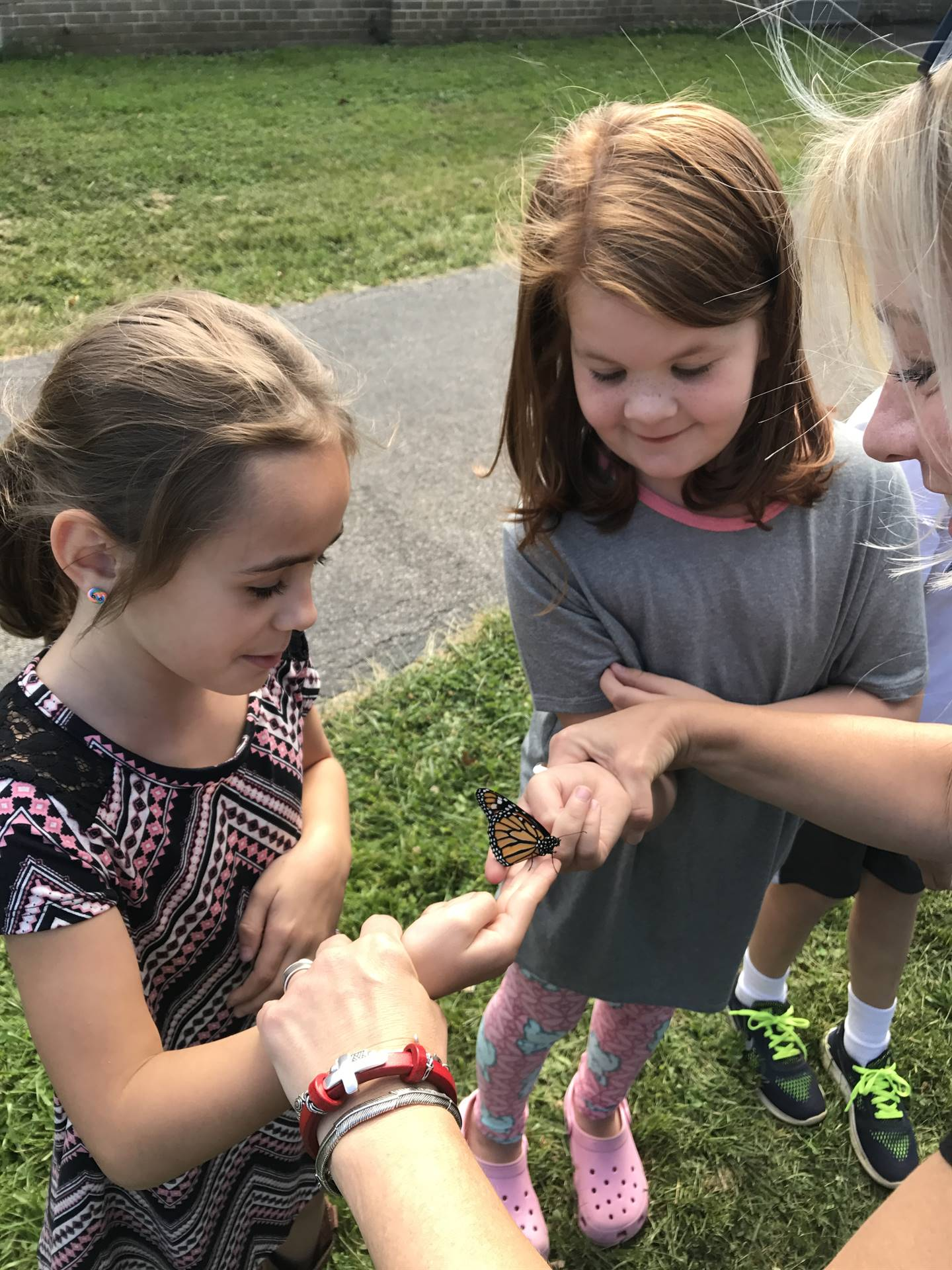 Students enjoy holding the butterflies before they are released