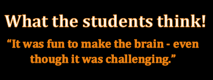 student quote: It was fun to make the brain - even though it was challenging.