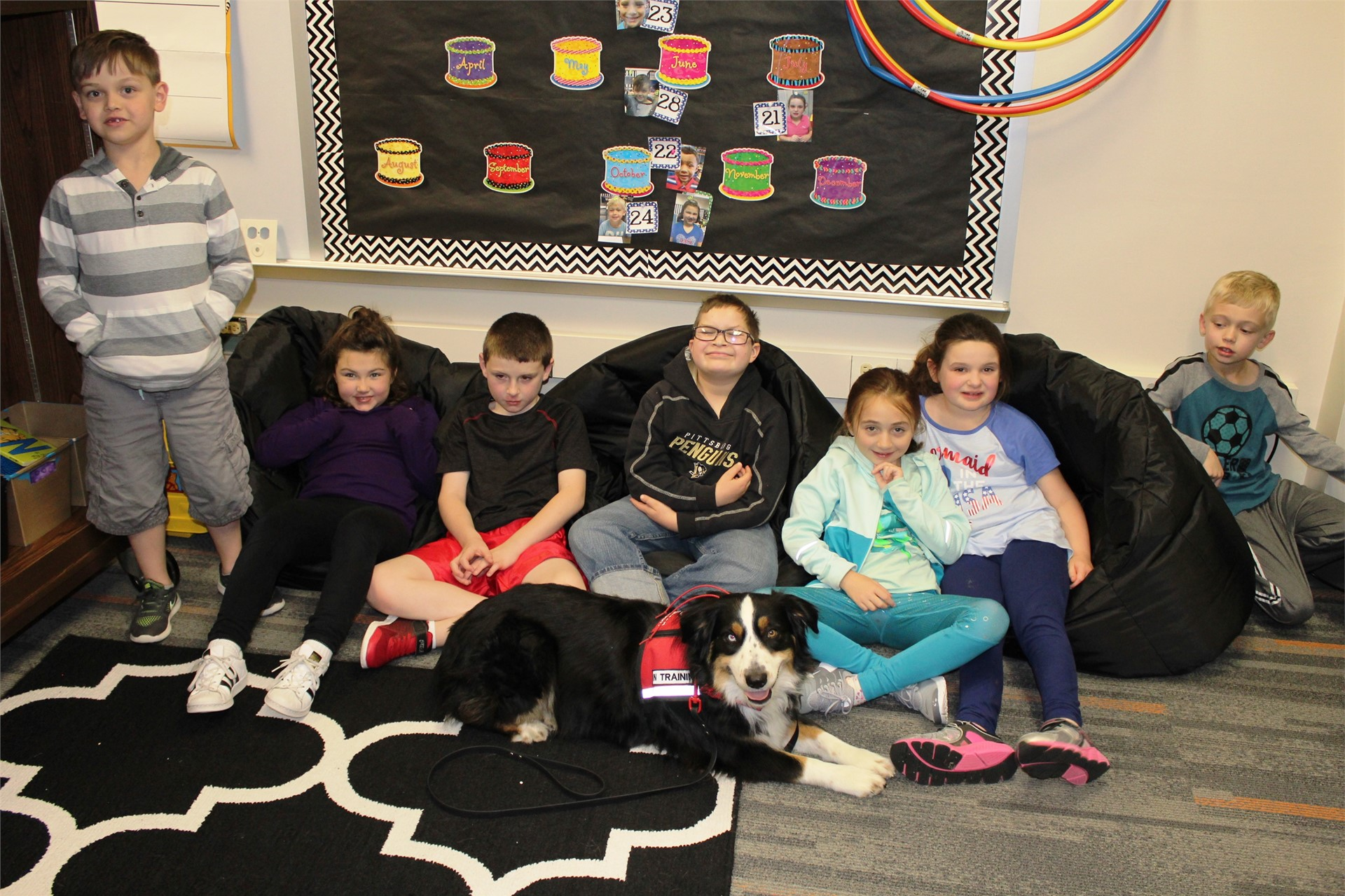 Students improve their reading skills by reading to therapy dogs