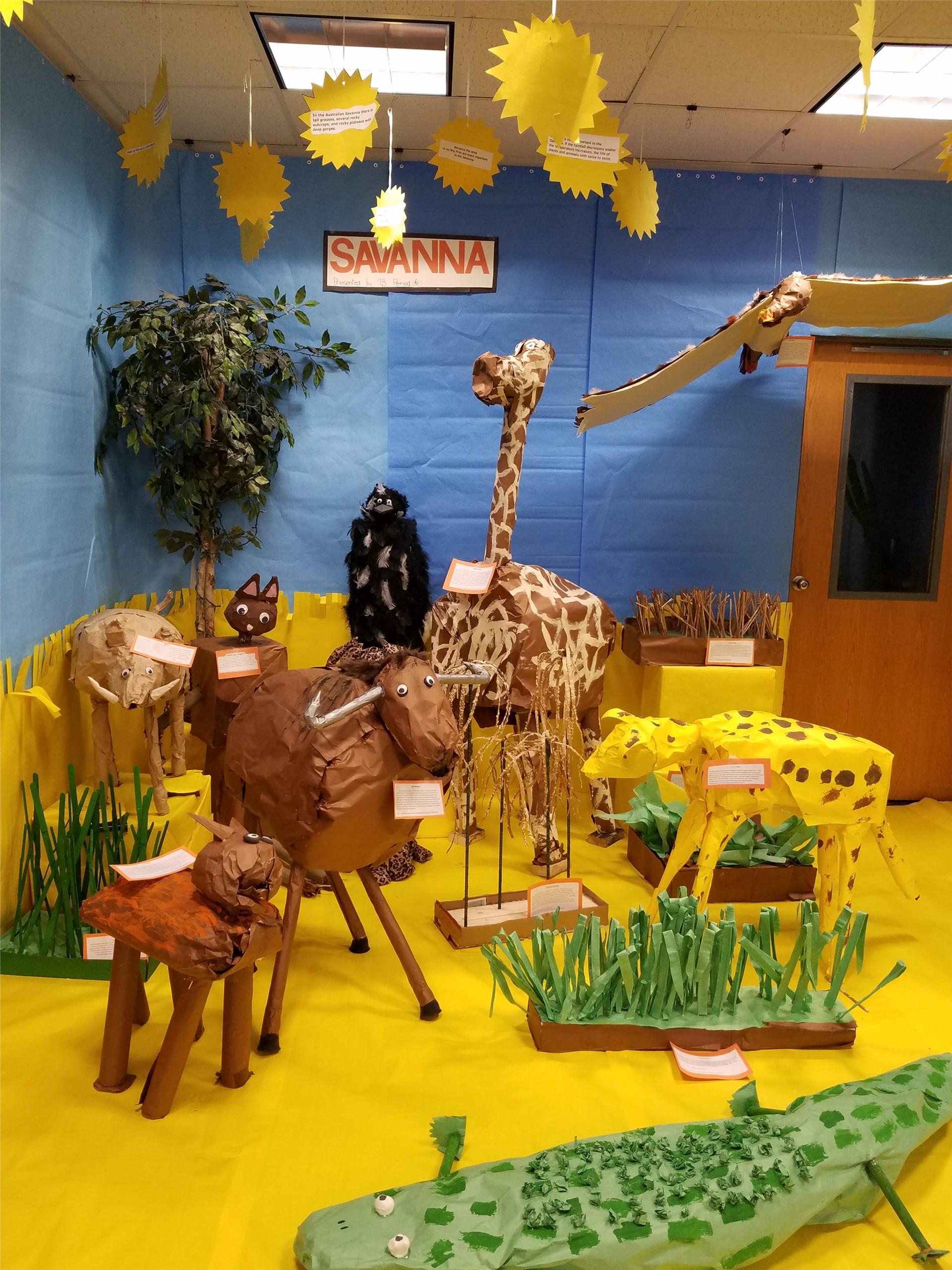 savanna biome display