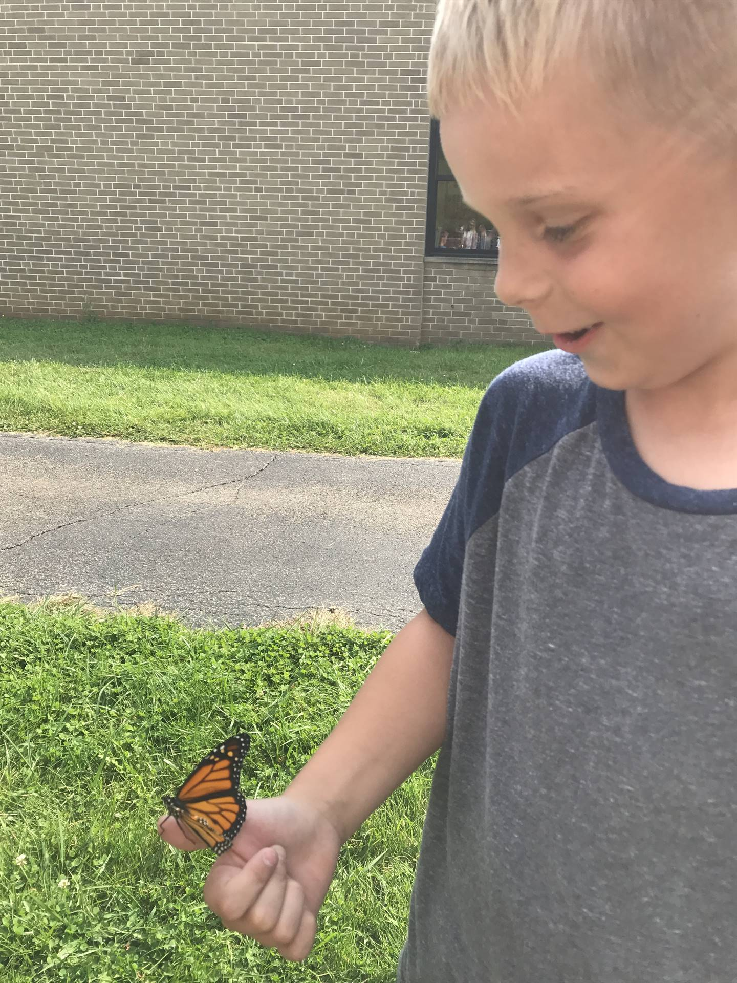 Every Penn student got a chance to hold the butterfly before it was released