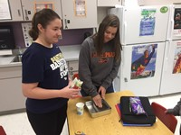 Two students planting microgreen seeds