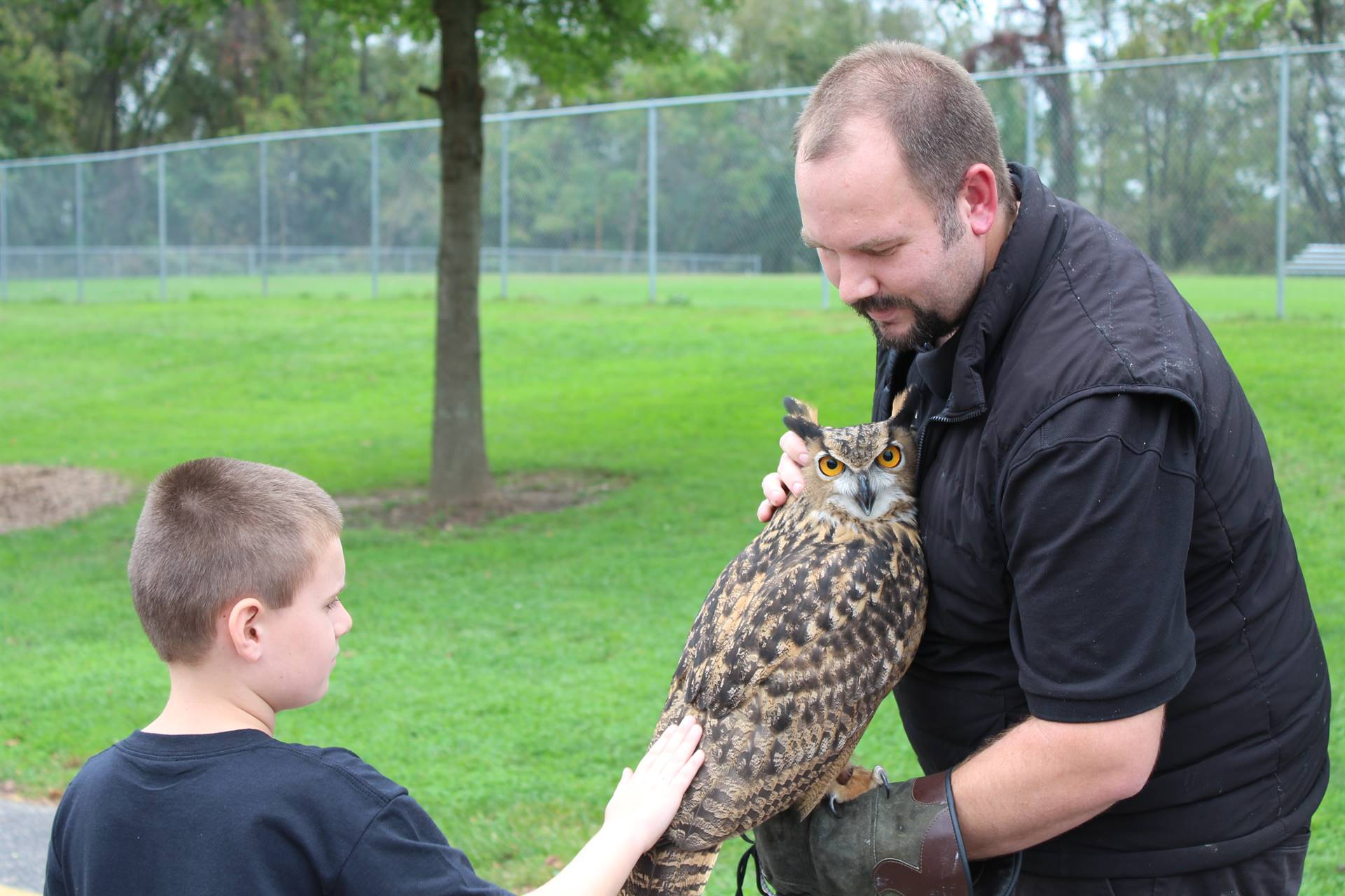 Student petting a Eurasian Eagle Owl