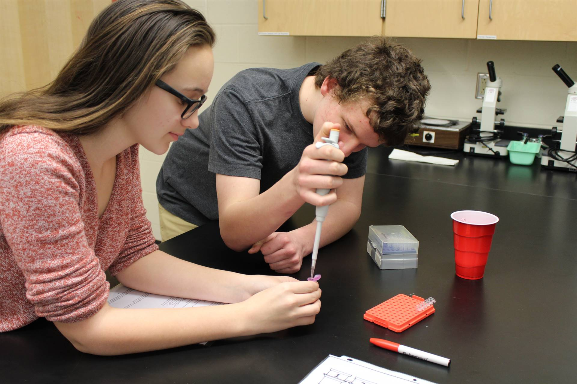 Students use pipettes to transfer their DNA samples to special test tubes