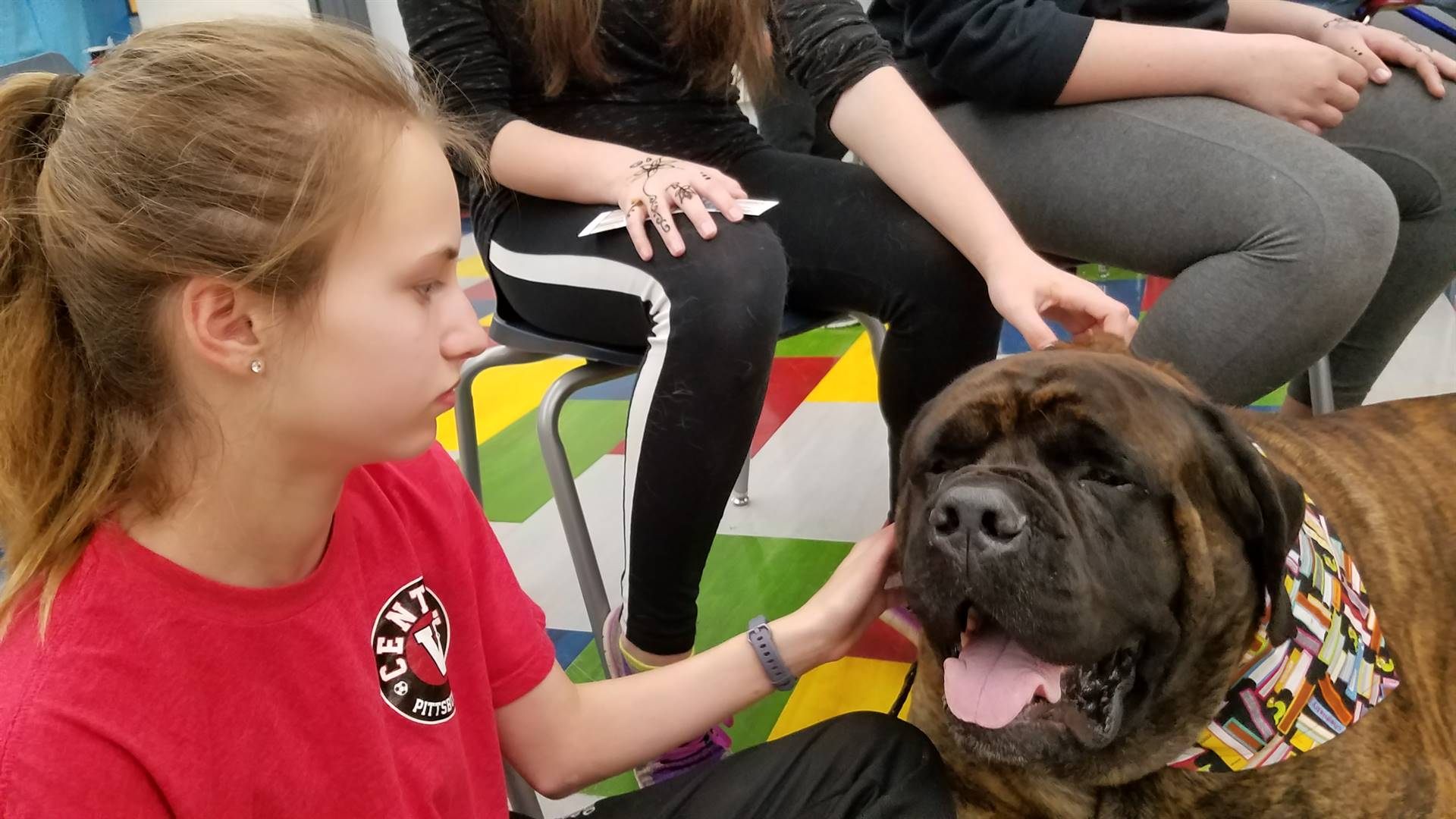 Loving our Therapy Dogs visits! - Meet Angus