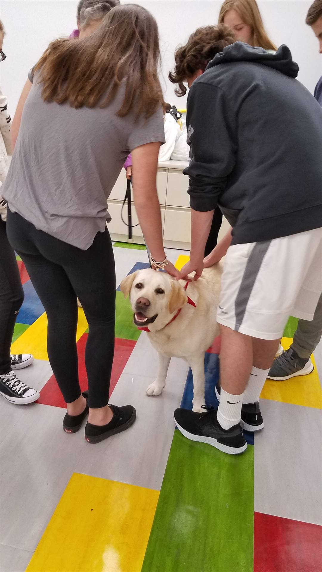 Loving our Therapy Dogs visits! - Meet Hopey