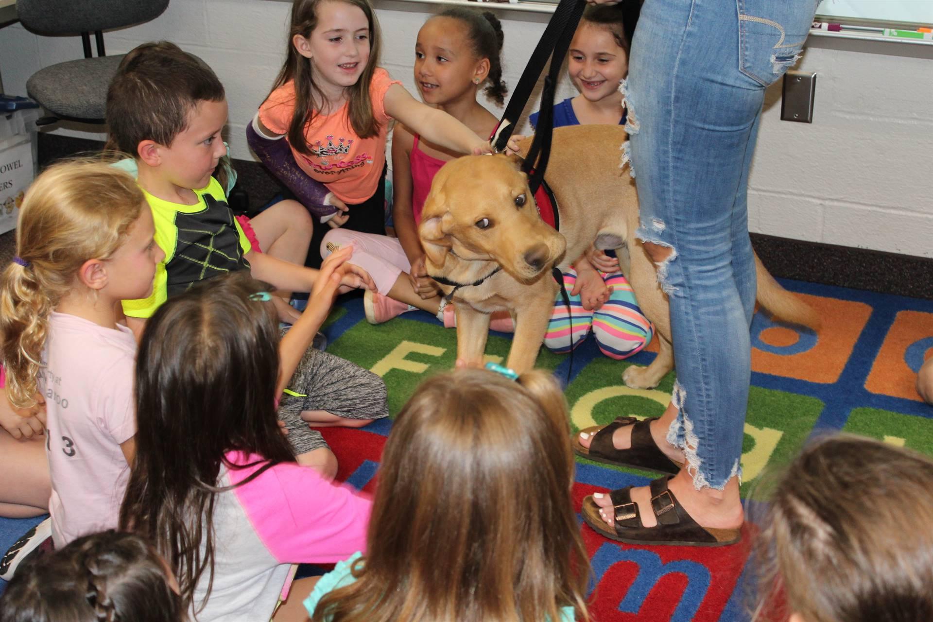 Students petting a service dog