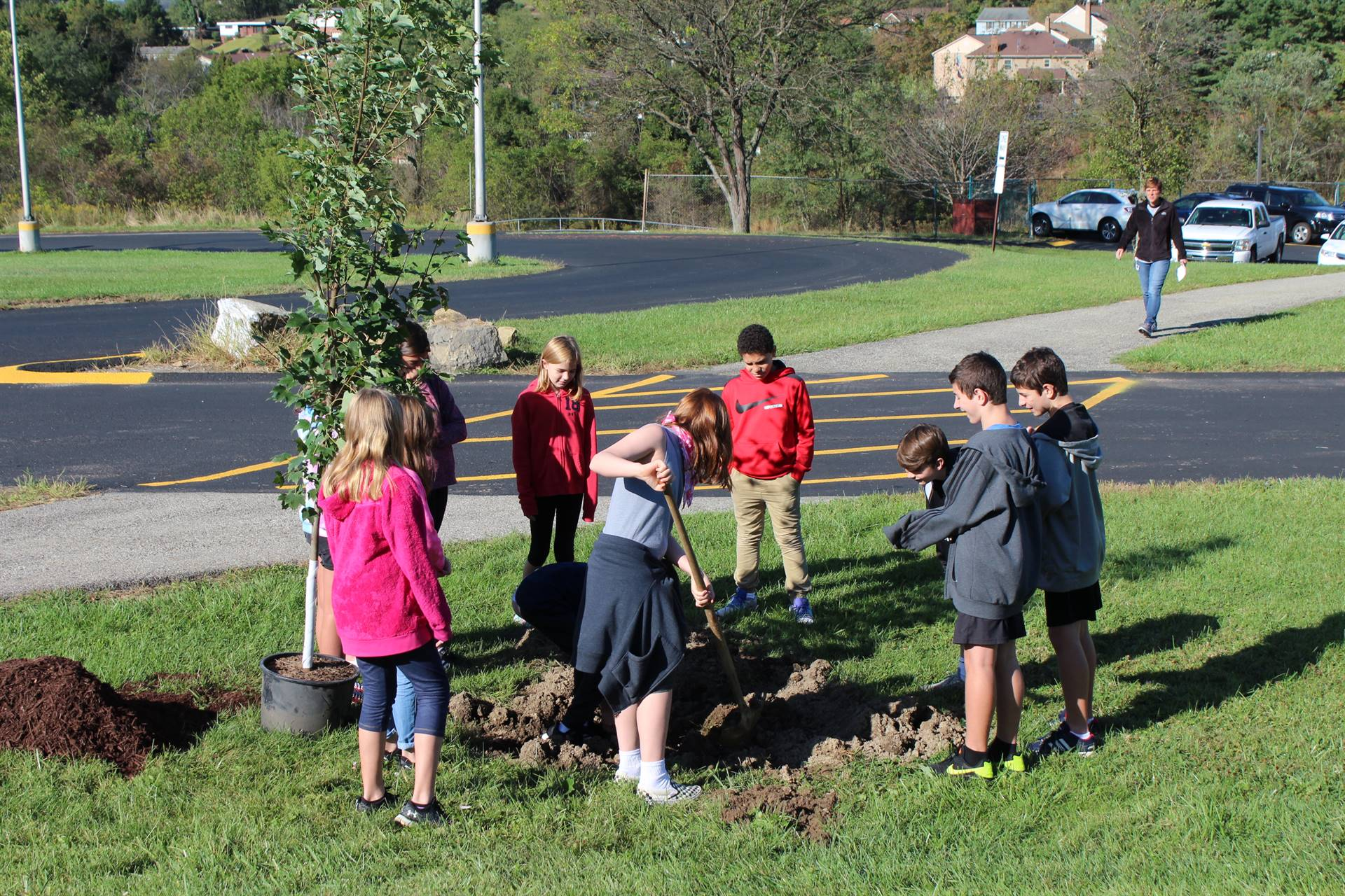 Group of students planting a tree