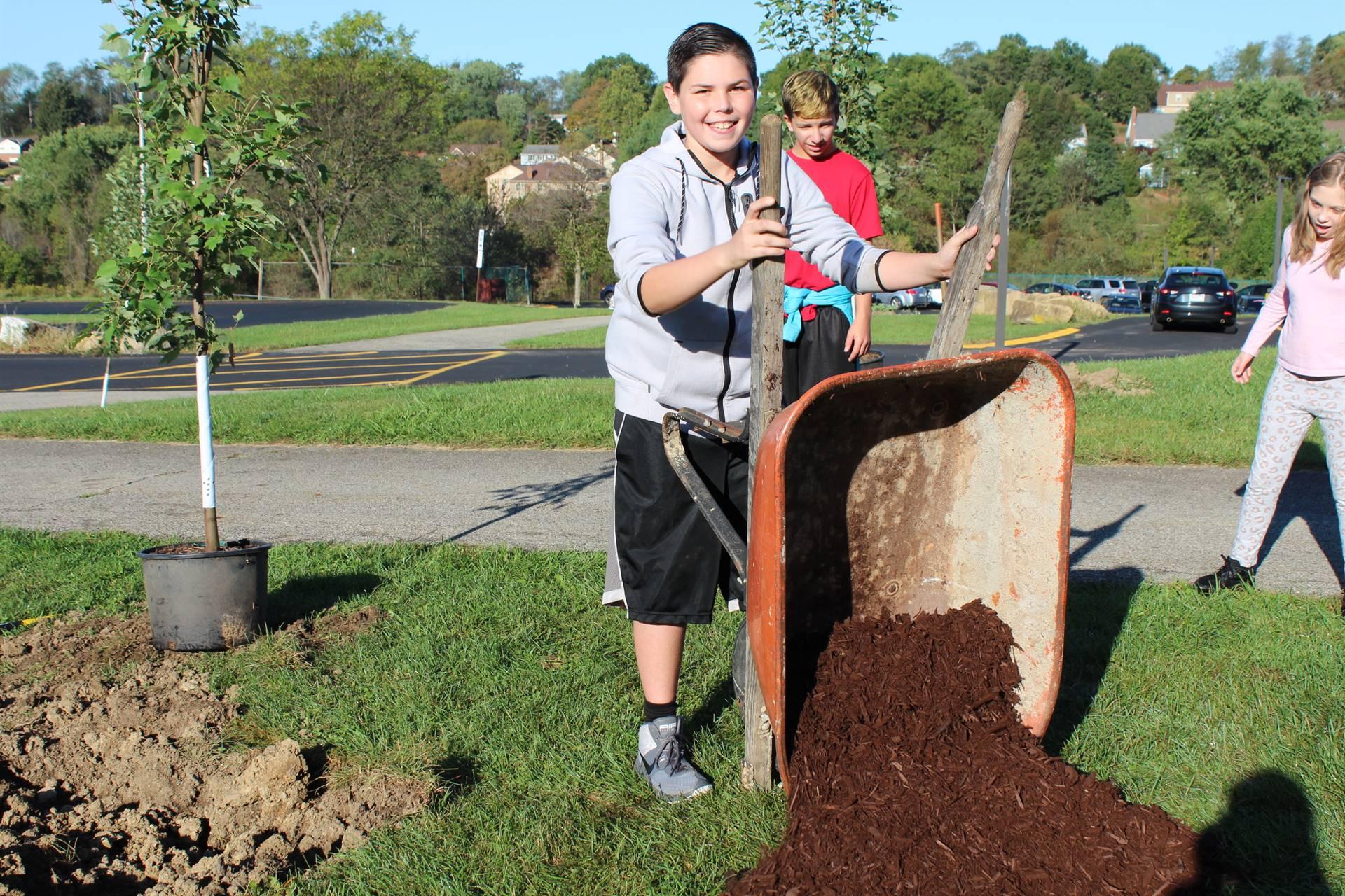 Student dumping mulch from a wheelbarrow