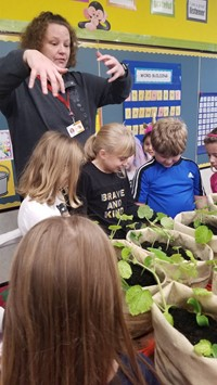 Mrs. Toth and the students looking at the pumpkin plants