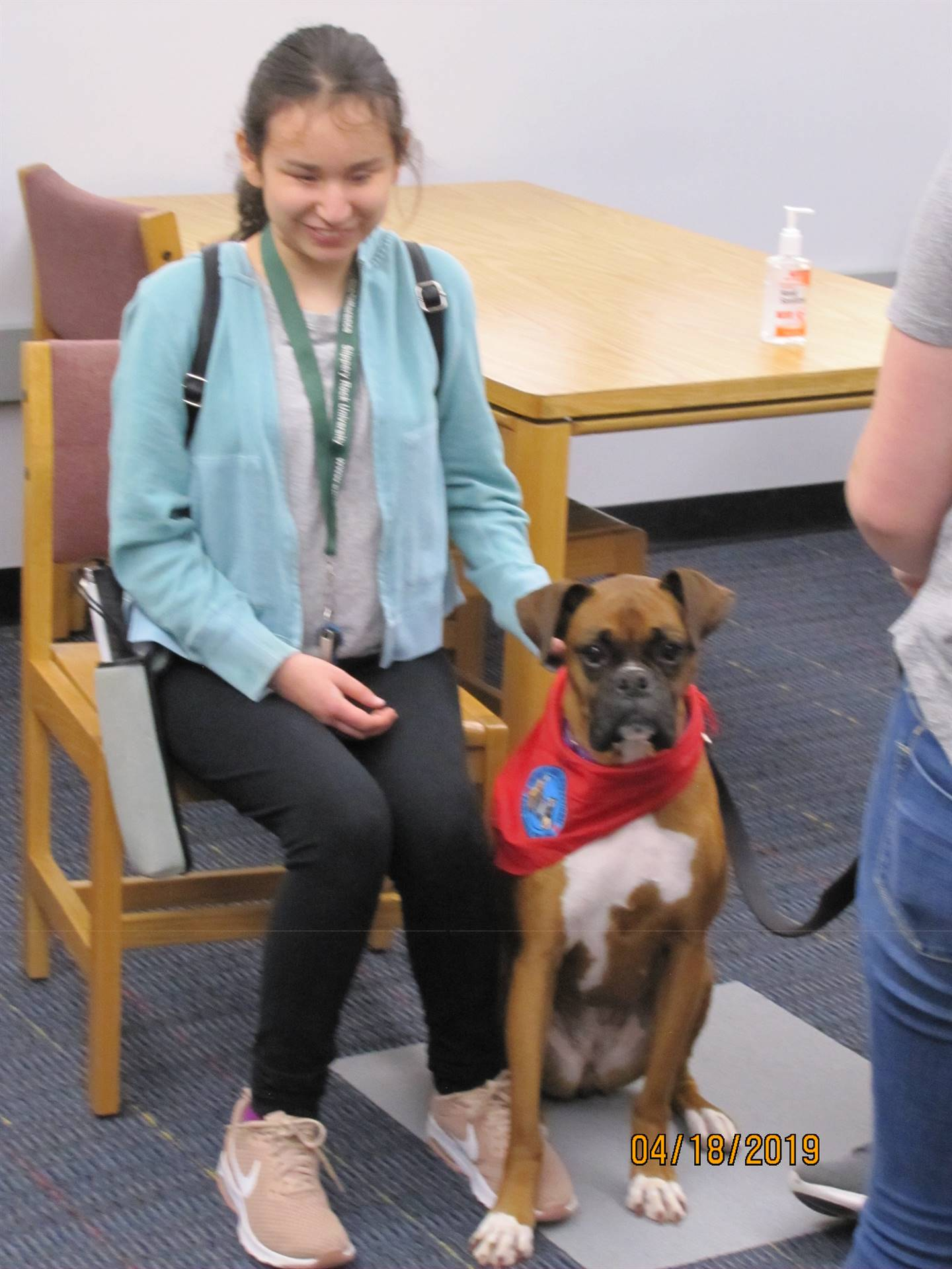 Therapy dogs visit - 2019